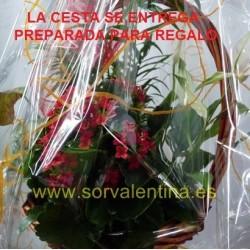 Cesta de plantas  naturales nº 5