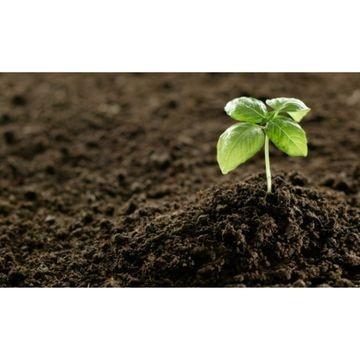 Sustrato Blumenerde, sustrato acido, arlita, arcilla expandida, vermiculita, perlita, recebo de césped.