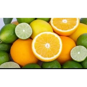 Si quieres comprar limoneros de luna o naranjos de mesa visita nuestra página Web.