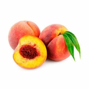 Envío de Plantones frutales de Melocotoneros en maceta a precios económicos de variedades tempranas y tardias. Envio de  árboles frutales a toda la península