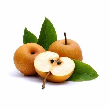 Envío online Árbol frutal nashi en maceta, con sabor a pera y manzana a toda la península