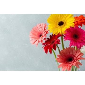 Envio de ramos de flores en Plasencia y alrededores
