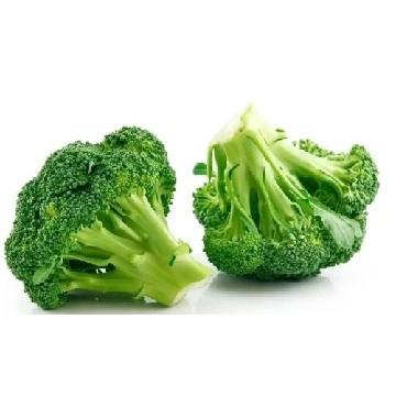 Envío de plantones de otoño e invierno de Brócoli cultivados en bandeja y servidos en cepellón a toda la península en formatos de 10, 25, 50, 75, 100, 150 y 200 Unidades.