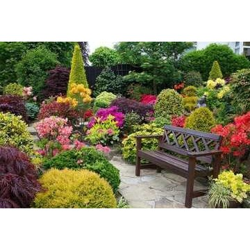 Envío de gran variedad de plantas de exterior para decoraciones de espacios grandes y pequeños a toda la península.